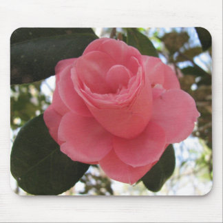 Pink Camellia Flower Mouse Pad