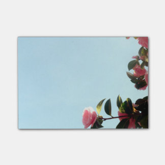 Pink Camellia Flowers With Blue Sky Post-it® Notes