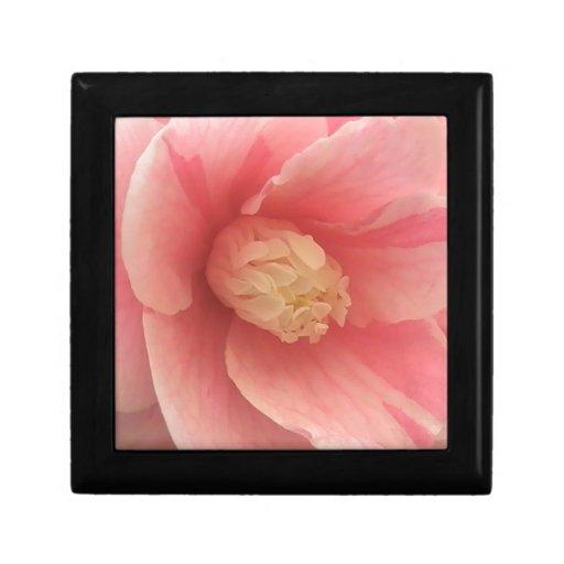 Pink Camellia Trinket Boxes