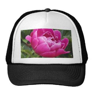 Pink Camellia Hat
