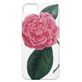Pink camellia iPhone case iPhone 5 Cases