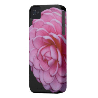 Pink Camellia iPhone Case iPhone 4 Case-Mate Cases