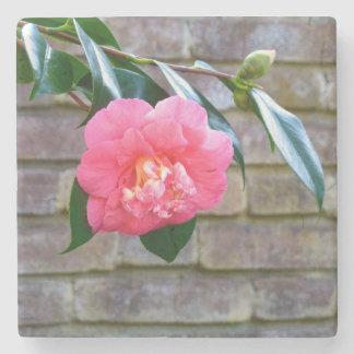 Pink Camellia Marble Coaster Stone Coaster