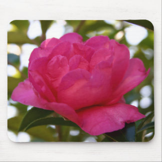 Pink Camellia Mousepad 3