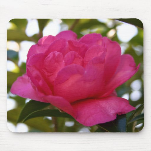 Pink Camellia Mousepad #3