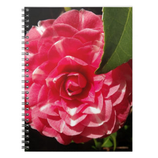pink camellia notebooks