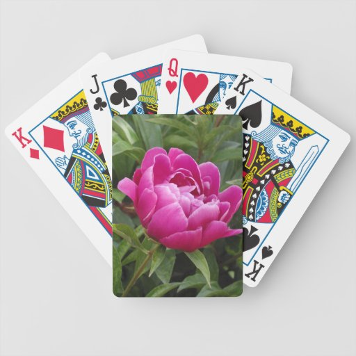 Pink Camellia Playing Cards