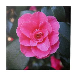 Pink Camellia Tiles