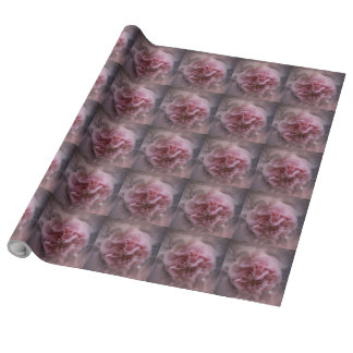 Pink Camellia Wrapping Paper