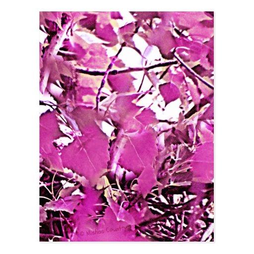 Pink Camo 3 Postcard