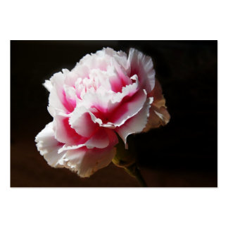 Pink Carnation Artcard ACEO Business Card Templates