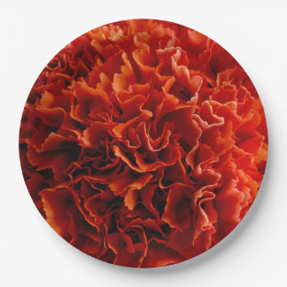 Pink Carnations Plates