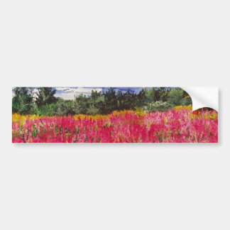 Pink Carpet Painting Bumper Sticker