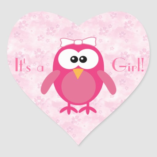 Pink Cartoon Owl & Flowers Its A Girl New Baby Stickers