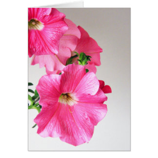 Pink Cascading Petunias Note Card