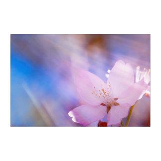Pink cherry blossom acrylic wall art