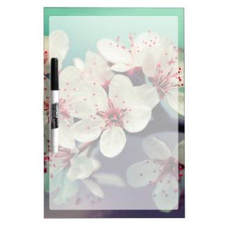 Pink Cherry Blossom, Cherryblossom, Sakura Dry Erase Board