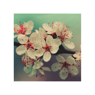 Pink Cherry Blossom, Cherryblossom, Sakura Wood Wall Art