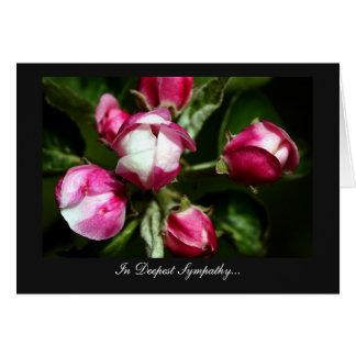 Pink Cherry Blossom - In Deepest Sympathy Card