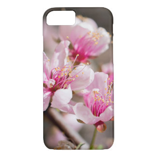 Pink cherry blossom phone case for iPhone/Samsung