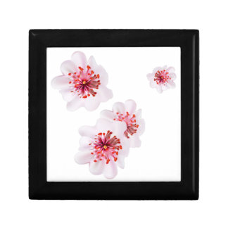 Pink cherry blossom sakura flowers  in Japanese st Gift Box