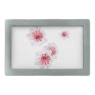 Pink cherry blossom sakura flowers  in Japanese st Rectangular Belt Buckle