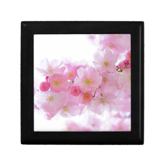 Pink Cherry Blossom Small Square Gift Box