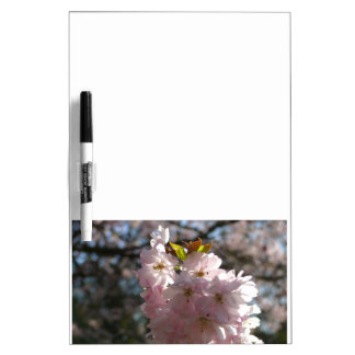 Pink cherry blossoms 01.2 dry erase board