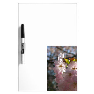 Pink cherry blossoms 01.3 dry erase board