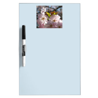 Pink cherry blossoms 01.6 dry erase board