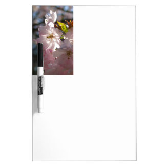Pink cherry blossoms dry erase board