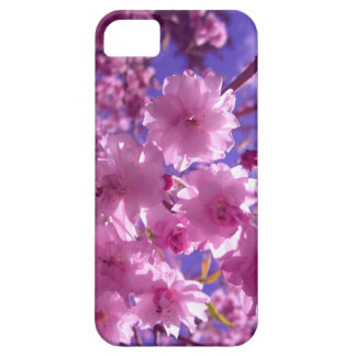 Pink Cherry Blossoms iPhone 5 Covers