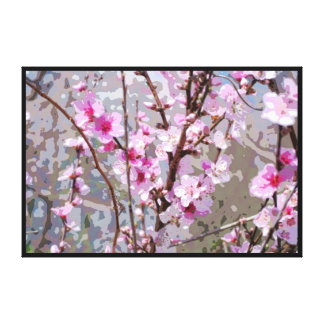 Pink Cherry Blossoms Stretched Canvas Print