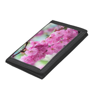 Pink Cherry Sakura Tree Trifold Wallets