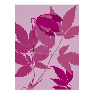 pink clematis posters