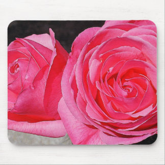 Pink Climbing Roses Mouse Pad