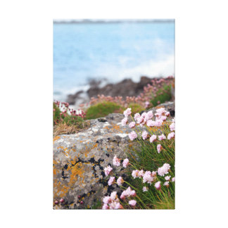 pink coastal wildflowers stretched canvas print