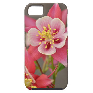 Pink columbine flower print iPhone 5 cases