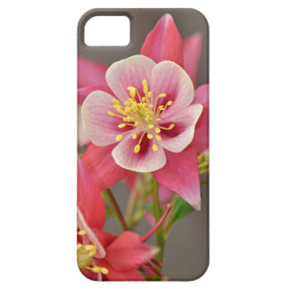 Pink columbine flower print iPhone 5 covers