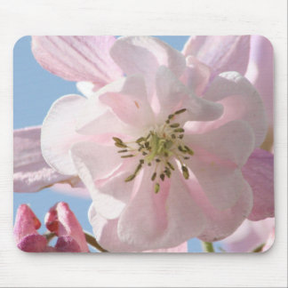 Pink Columbine Flowers Mouse Pad
