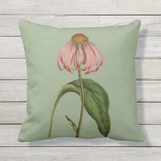 Pink Coneflower Botanical Outdoor Pillow 16x16