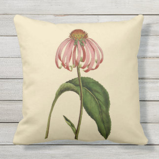 "Pink Coneflower Botanical Outdoor Pillow 20"" x 20"""
