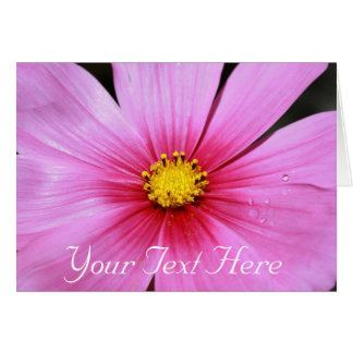 Pink Cosmo, Your Text Here Greeting Card