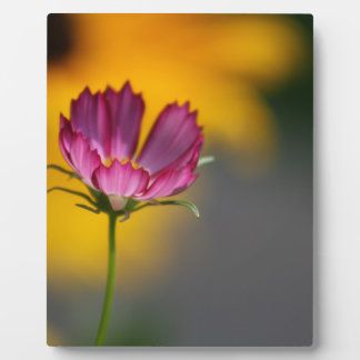 Pink Cosmos and Black Eyed Susans Plaque