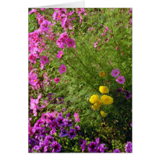 Pink Cosmos And Yellow Mums flowers Greeting Cards