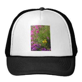 Pink Cosmos And Yellow Mums flowers Hat