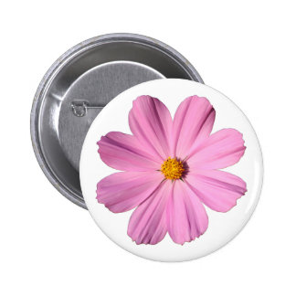 Pink Cosmos Buttons