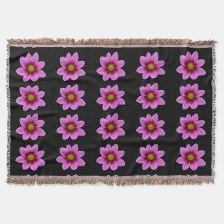 Pink Cosmos Daisy Flower