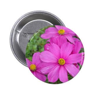 Pink cosmos flower garden pinback button