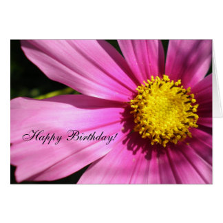 Pink Cosmos Flower Happy Birthday Card